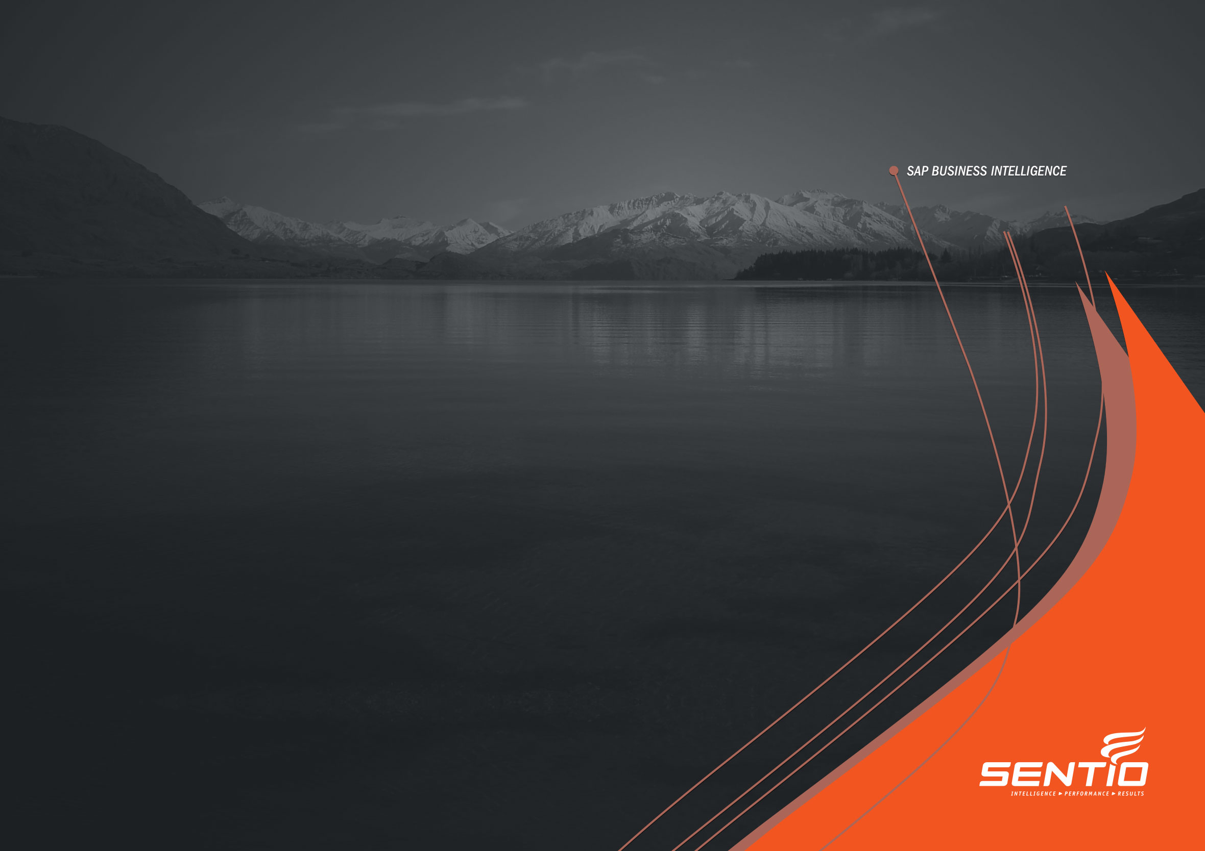 Sentio company overview brochure front