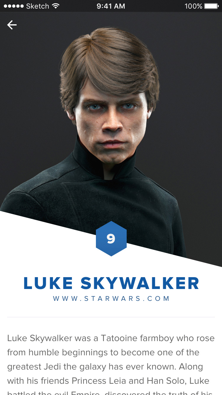 06-user-profile-luke